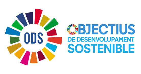 Place to Plug Blog | Què són els ODS? 17 Objectius de Desenvolupament Sostenible